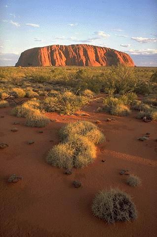 Uluru-&-Spinifex