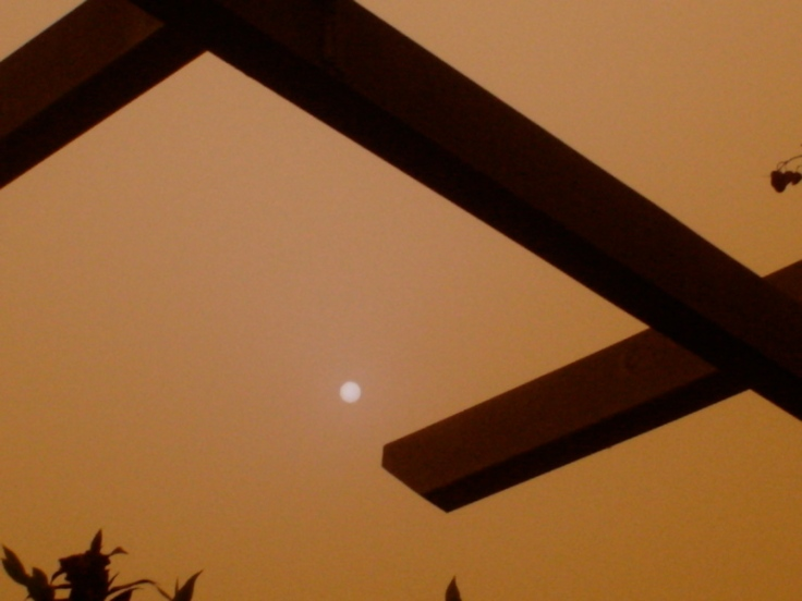 Dusty sun