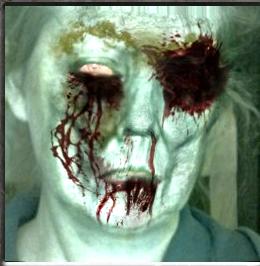 zombified_wb20130102040733446941